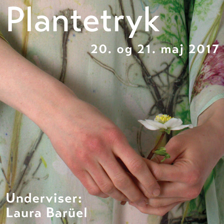 Plantetryk Baruel 2017 Emilielunden