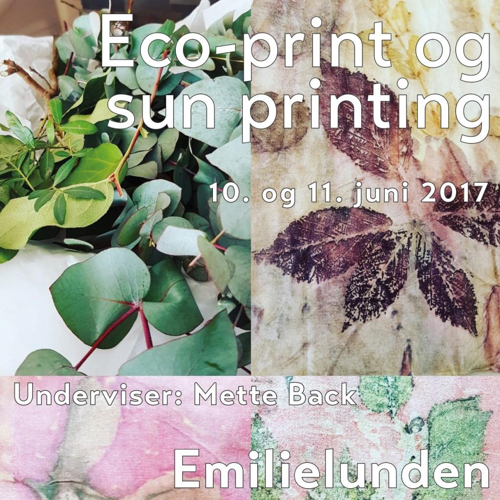 Ecoprint 2017 Emilielunden FB