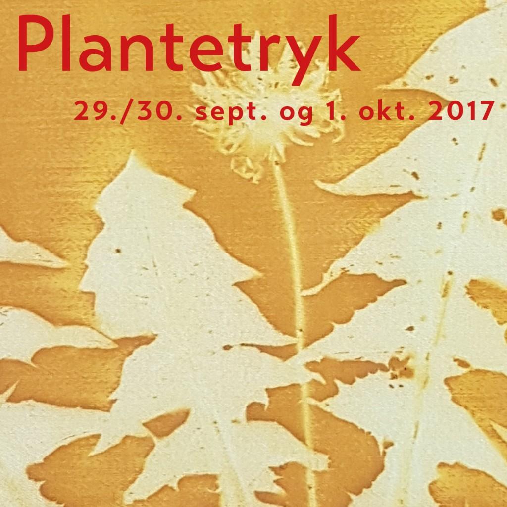 Plantetryk september 2017 cover